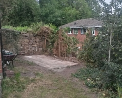 Ivy Clad Holly Tree Fell - Plus Old Shed Removal - Vicarage Hill - Westerham - After