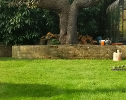 Peartree Reduction - Chistlehurst, Kent - After 2