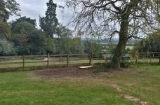 Large 80ft Conifer Fell - Tandridge - After