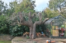 Peartree Reduction - Chistlehurst, Kent - After